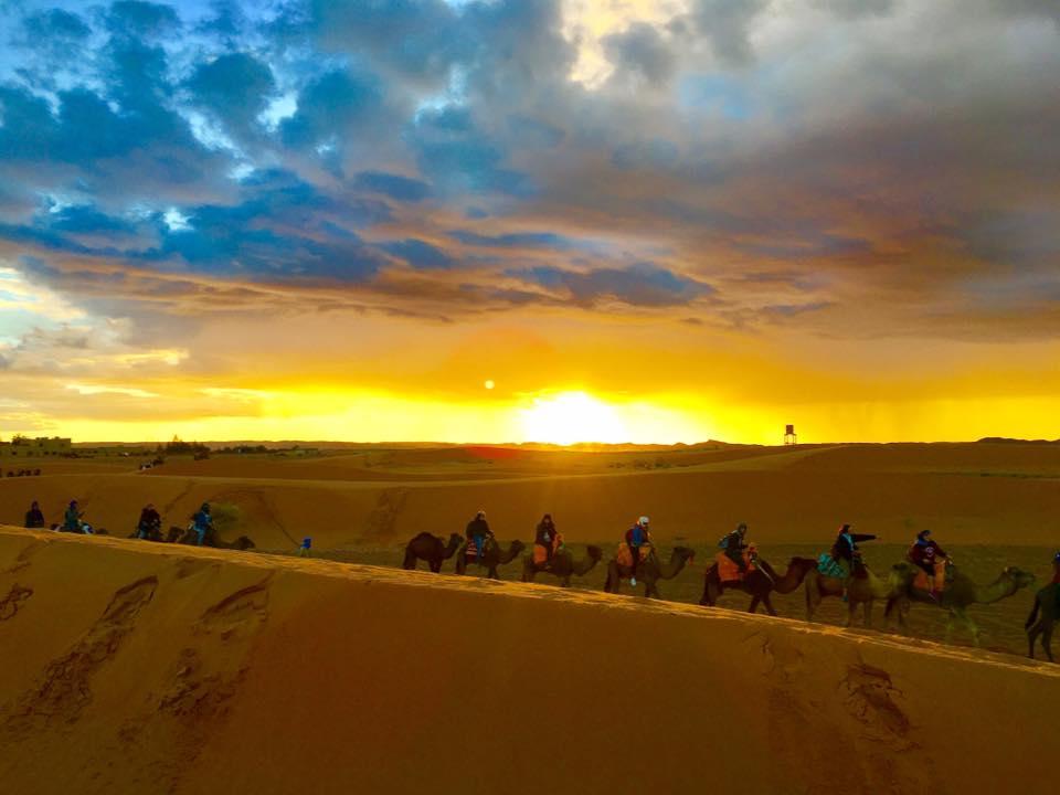 marruecos.desierto.camellos.sunset