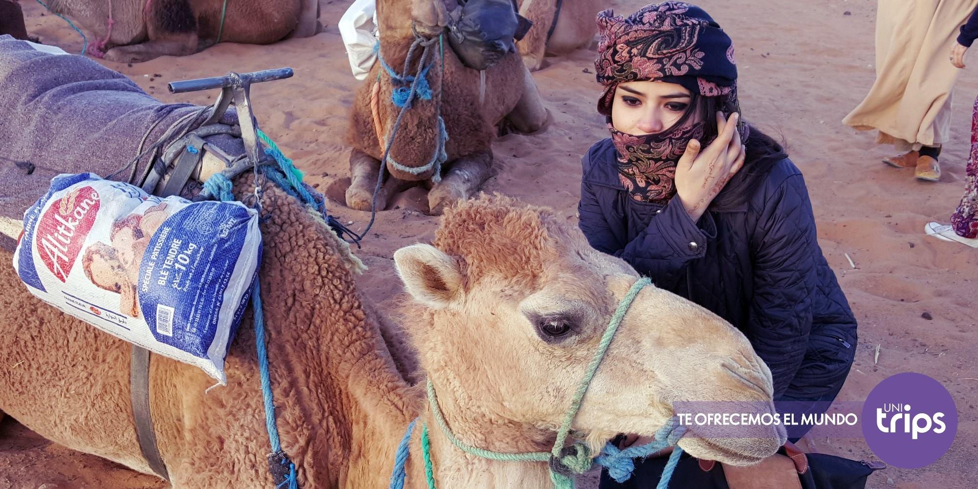 morocco camel ride