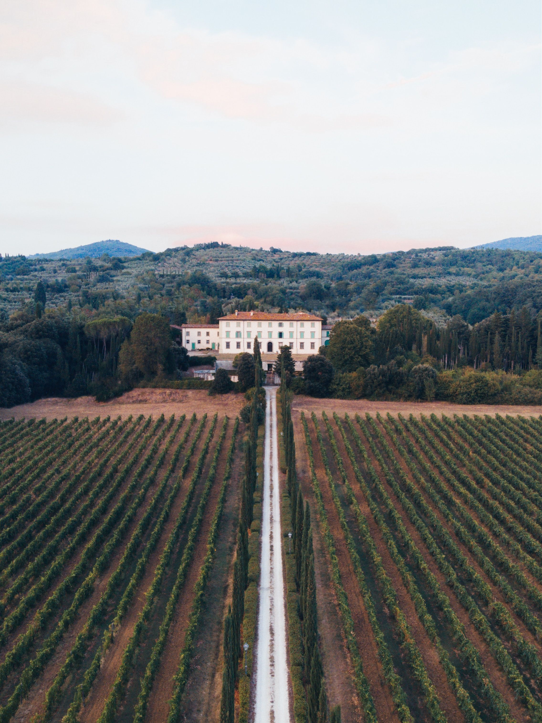Photo of vineyard fields Tuscany