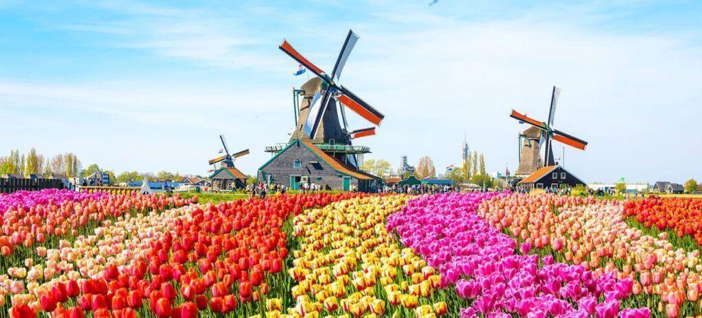 destinos instagrameables paises bajos campo de tulipanes